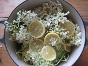 elderflowers and lemons